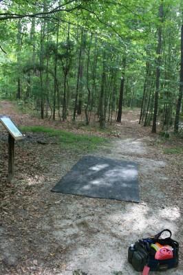 Tom Triplett, Main course, Hole 8 Long tee pad