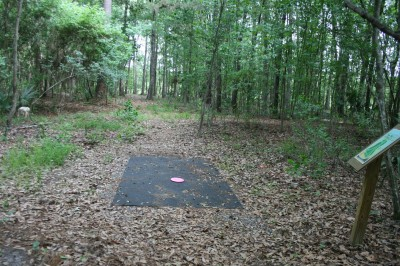 Tom Triplett, Main course, Hole 11 Long tee pad