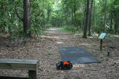 Tom Triplett, Main course, Hole 10 Long tee pad