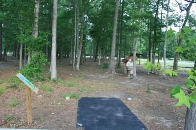 Tom Triplett, Main course, Hole 1 Long tee pad