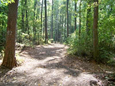Rosewood-Dekalb @ Redan Park, Main course, Hole 7 Tee pad