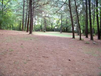 Rosewood-Dekalb @ Redan Park, Main course, Hole 17 Midrange approach