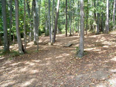 Rosewood-Dekalb @ Redan Park, Main course, Hole 11 Midrange approach