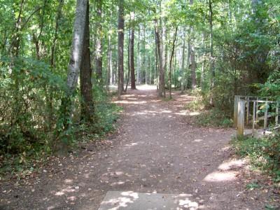 Rosewood-Dekalb @ Redan Park, Main course, Hole 12 Tee pad