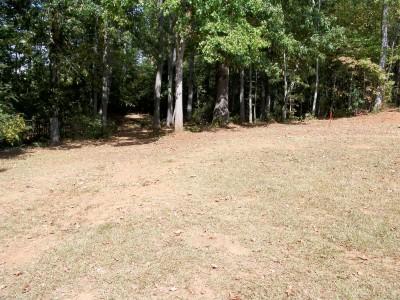 Rosewood-Dekalb @ Redan Park, Main course, Hole 5 Midrange approach