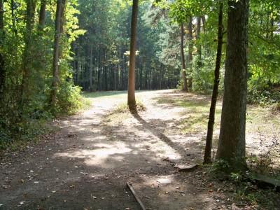 Rosewood-Dekalb @ Redan Park, Main course, Hole 13 Tee pad