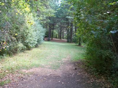 Rosewood-Dekalb @ Redan Park, Main course, Hole 17 Tee pad