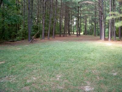 Rosewood-Dekalb @ Redan Park, Main course, Hole 15 Midrange approach