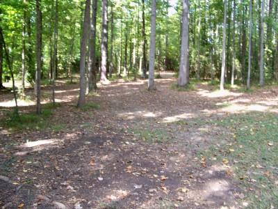 Rosewood-Dekalb @ Redan Park, Main course, Hole 12 Midrange approach