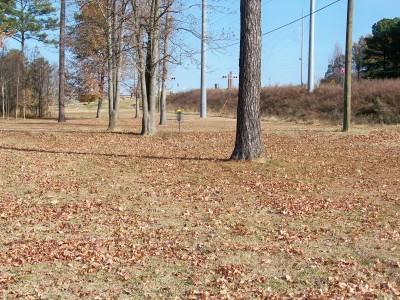 Ridge Ferry Park, Main course, Hole 11 Midrange approach