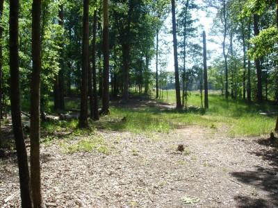 J.P. Moseley Park, Main course, Hole 6 Long approach
