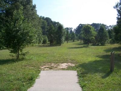 J.P. Moseley Park, Main course, Hole 14 Tee pad