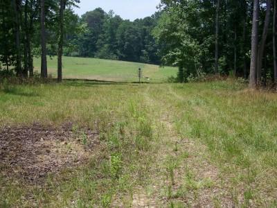 J.P. Moseley Park, Main course, Hole 9 Midrange approach
