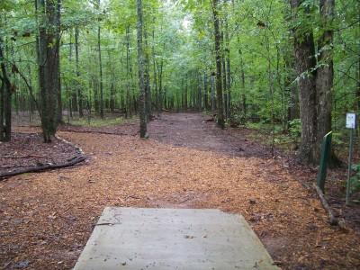 J.P. Moseley Park, Main course, Hole 5 Tee pad