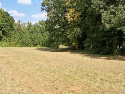 J.P. Moseley Park, Main course, Hole 7 Midrange approach