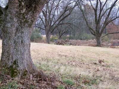Hawk's Grove, Main course, Hole 6 Midrange approach