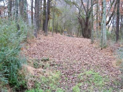 Hawk's Grove, Main course, Hole 7 Midrange approach