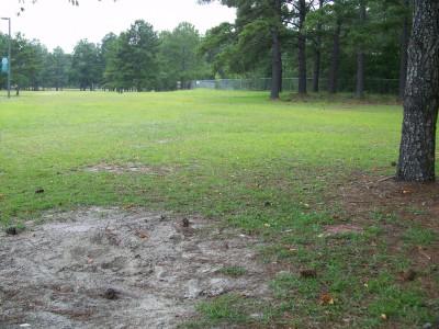 East Georgia College, Main course, Hole 8 Tee pad