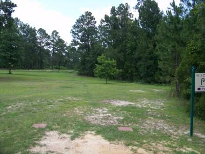 East Georgia College, Main course, Hole 2 Tee pad