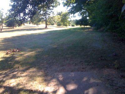 Basil Griffin Park, Main course, Hole 11 Tee pad