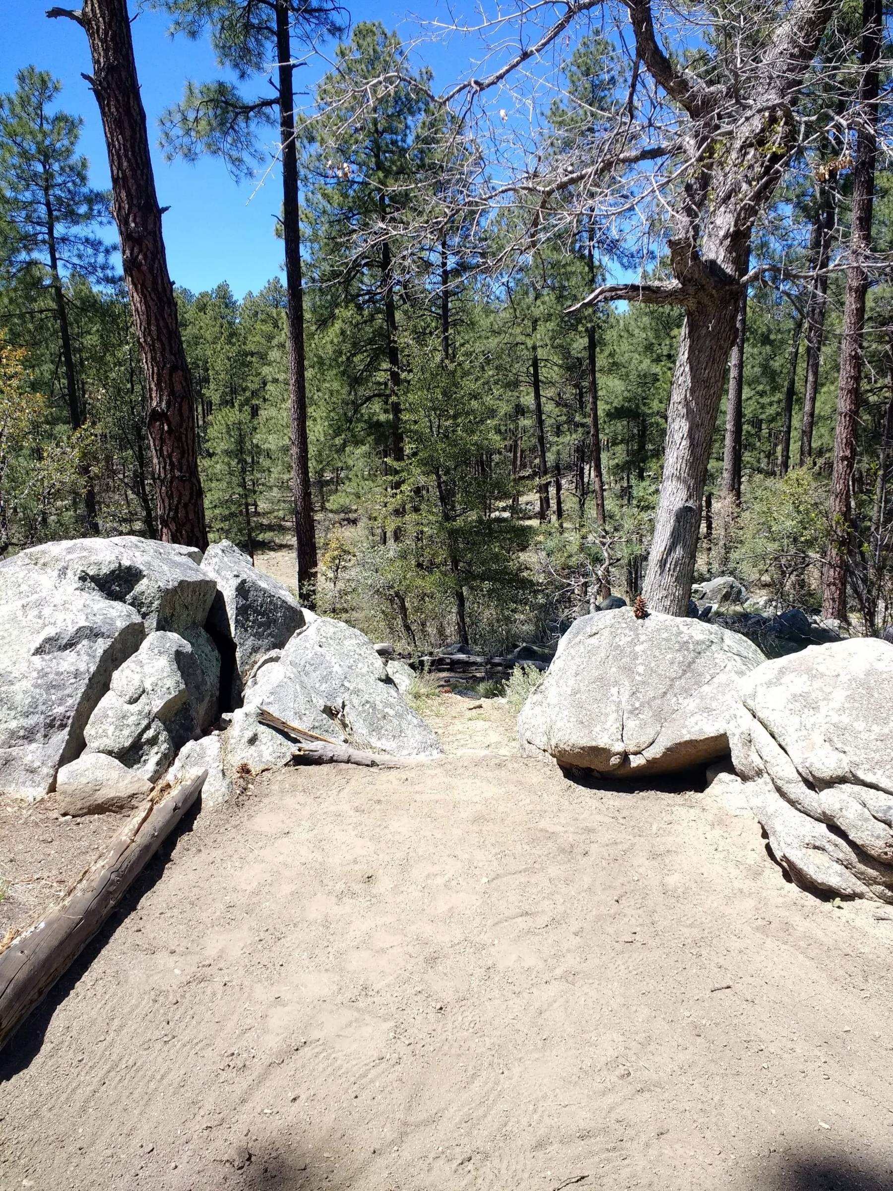Hole 16 • Ponderosa Park (Prescott, AZ) | Disc Golf ...