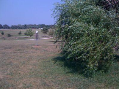 White Park, Main course, Hole 6 Putt