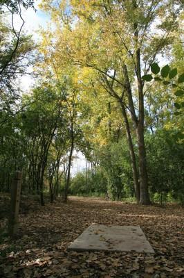 Bandemer Park, Bandemer, Hole 2 Short tee pad
