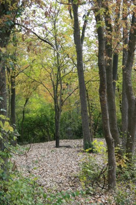 Bandemer Park, Bandemer, Hole 4 Short approach