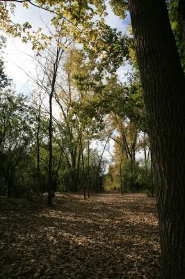 Bandemer Park, Bandemer, Hole 2 Midrange approach