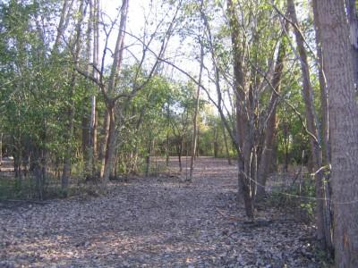 Bandemer Park, Bandemer, Hole 1 Long tee pad