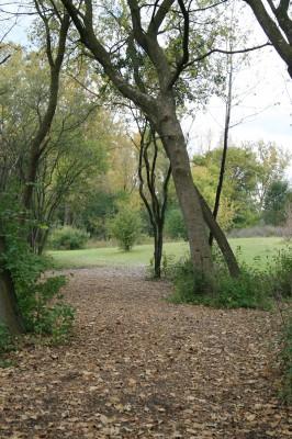 Bandemer Park, Bandemer, Hole 7 Long approach