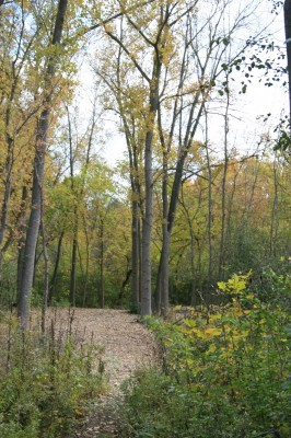 Bandemer Park, Bandemer, Hole 4 Long approach
