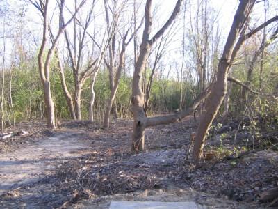 Bandemer Park, Bandemer, Hole 3 Short tee pad