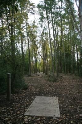 Bandemer Park, Bandemer, Hole 6 Long tee pad