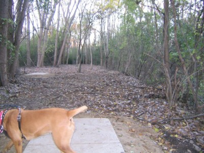 Bandemer Park, Bandemer, Hole 5 Long tee pad