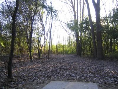 Bandemer Park, Bandemer, Hole 2 Long tee pad