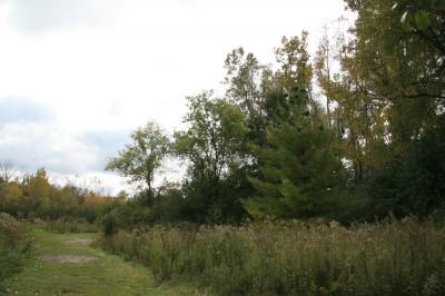 Bandemer Park, Bandemer, Hole 8 Long approach