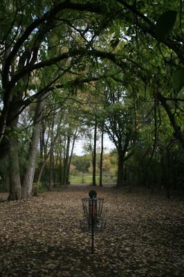 Bandemer Park, Bandemer, Hole 8 Reverse (back up the fairway)