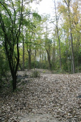 Bandemer Park, Bandemer, Hole 6 Long approach