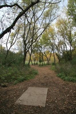Bandemer Park, Bandemer, Hole 7 Long tee pad