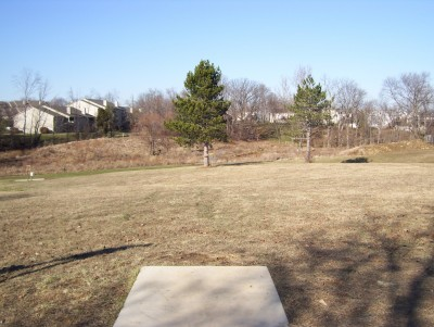 Boone Woods Park, Main course, Hole 8 Tee pad