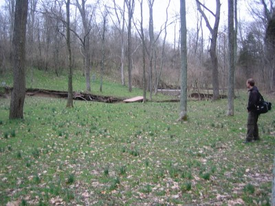 Idlewild, Main course, Hole 14 Midrange approach