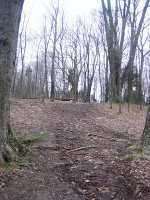 Idlewild, Main course, Hole 15 Midrange approach