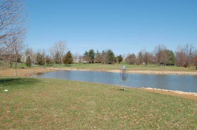 Freeman Lake Park, Main course, Hole 16 Reverse (back up the fairway)