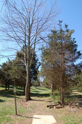 Freeman Lake Park, Main course, Hole 7 Tee pad