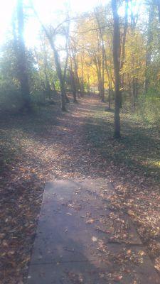 East Frankfort Park, Main course, Hole 5 Tee pad