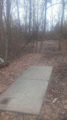 East Frankfort Park, Main course, Hole 11 Tee pad