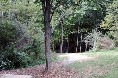 Banklick Woods Park, Main course, Hole 14 Tee pad
