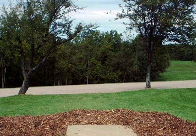 Banklick Woods Park, Main course, Hole 1 Tee pad