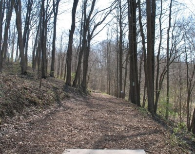 Banklick Woods Park, Main course, Hole 16 Tee pad